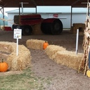 Fall Family Festival photo album thumbnail 3